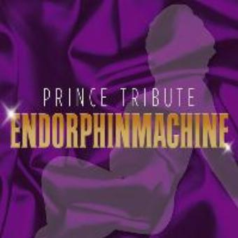 Generic placeholder imagePrince Tribute Endorphinmachine