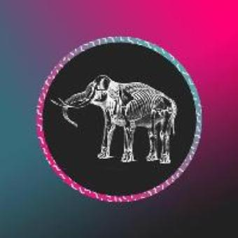 Generic placeholder imageElephant Sessions